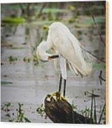 Snowy Egret In Swamp Wood Print