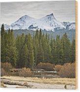 Snowy Fall In Yosemite Wood Print