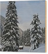 Snowy Fir Trees  Wood Print