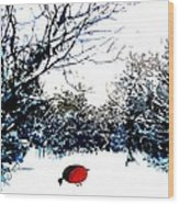 Snowy Forest At Christmas Time Wood Print