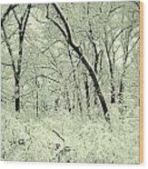 Snowy Forest Wood Print