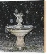 Snowy Fountain Wood Print