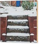 Snowy Garden Wood Print by Tom Gowanlock