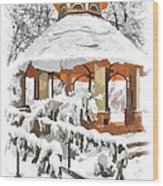 Snowy Gazebo - Greensboro North Carolina II Wood Print by Dan Carmichael