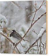 Snowy Grace Cardinals Wood Print