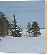 Snowy Hillside With Evergreen Trees And Bluesky Wood Print