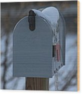 Snowy Kansas Mailbox Wood Print by Robert D  Brozek