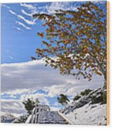 Snowy Lake Elsinore Wood Print