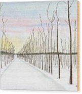Snowy Lane Wood Print by Arlene Crafton