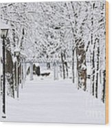 Snowy Lane In Winter Park Wood Print