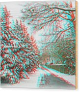 Snowy Lane - Use Red/cyan Filtered 3d Glasses Wood Print
