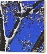 Snowy Limbs 14051 Wood Print