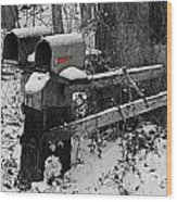 Snowy Mailbox Sc Wood Print