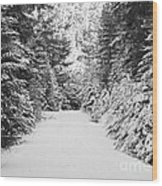 Snowy Mountain Road - Black And White Wood Print