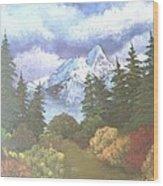 Snowy Mountains Wood Print