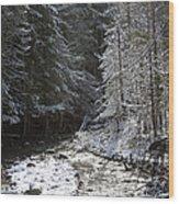 Snowy Oregon Stream Wood Print