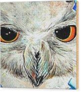 Snowy Owl - Female - Close Up Wood Print by Daniel Janda