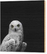 Snowy Owl Wood Print by Mark Rogan