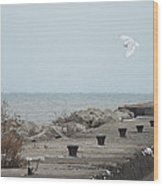 Snowy Owl On The Move Wood Print