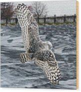 Snowy Owl Wingspan Wood Print