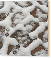 Snowy Path And Paw Prints Wood Print