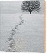 Snowy Path Wood Print by Diane Diederich