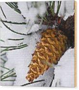 Snowy Pine Cone Wood Print
