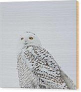 Snowy Portrait Wood Print