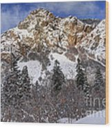 Snowy Ridge Above Bell Canyon - Wasatch Mountains - Utah Wood Print