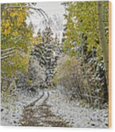 Snowy Road In Fall Wood Print