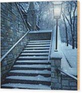 Snowy Stairway Wood Print