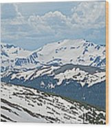 Snowy Terrain Near Top Of Trail Ridge Road In Rocky Mountain Np-co   Wood Print