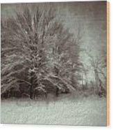 Snowy Treasure Wood Print