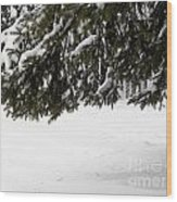 Snowy Tree Branches Wood Print