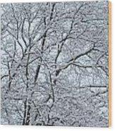 Snowy Tree Limb Maze Wood Print