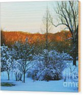 Snowy Trees In December Twilight - Pearl S. Buck Homestead Wood Print by Anna Lisa Yoder