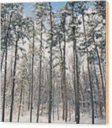 Snowy Trees Wood Print