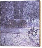 Snowy Turkey Trail Wood Print