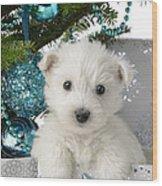 Snowy White Puppy Present Wood Print