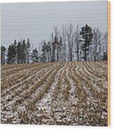 Snowy Winter Cornfields Wood Print