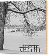 Snowy Winter Country Cottonwood Tree View Bwsc Wood Print by James BO  Insogna