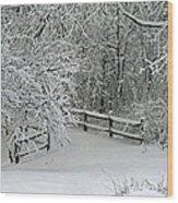 Snowy Winter Wood Print