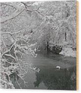 Snowy Wissahickon Creek Wood Print