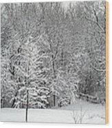 Snowy Woodland Wood Print