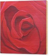 So Red The Rose Wood Print by Hunter Jay