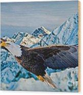 Soaring Bald Eagle Wood Print by Gary Keesler