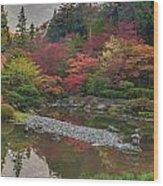 Soaring Fall Colors In The Arboretum Wood Print