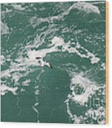 Soaring Over The Falls Waters Wood Print