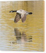 Soaring Over The River Wood Print