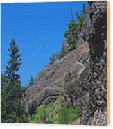 Soaring The Heights Wood Print